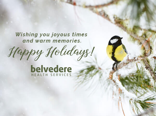holiday-belvedere.jpg